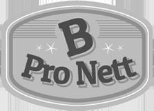 SARL B PRO NETT